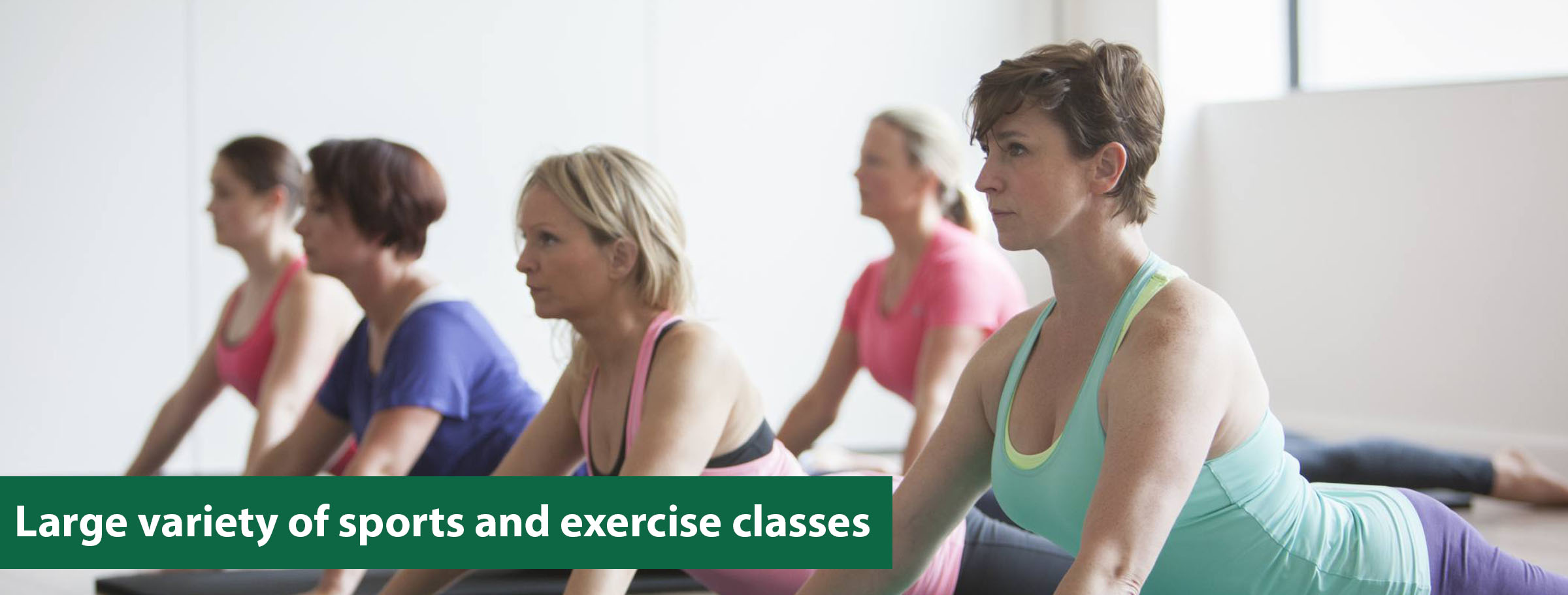 Exercise Classes Banner - HP